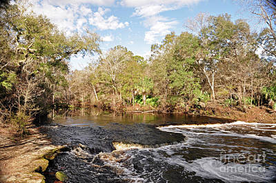Photograph - Steinhatchee Fall by Nanette OHara
