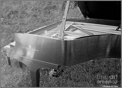 Piano Photograph - Steinway Grand Piano In Grass Black And White by Charlene Cox