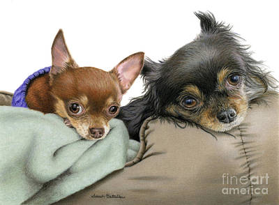 Dog Close-up Painting - Stella And Nettie by Sarah Batalka