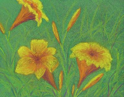 Pastel - Stella D'oro #2 by Anne Katzeff