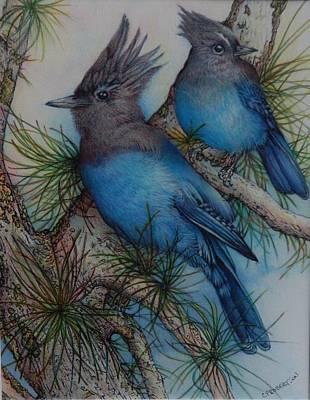 Stellars Jay Drawing - Stellar Jays by Catherine Robertson
