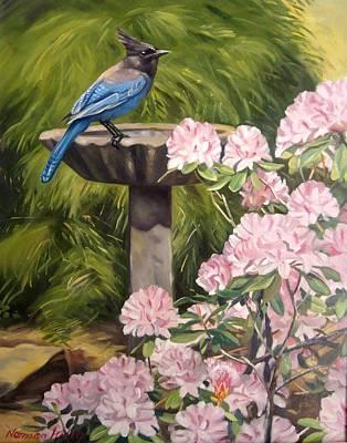 Steller Jay Art Print by Norman Kelly
