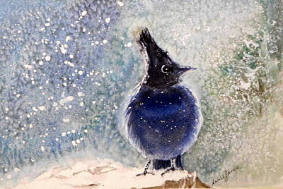 Painting - Steller's Jay by Anna Jacke