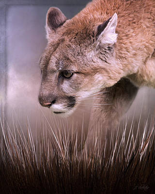 Painting - Step Forward - Cougar Art by Jordan Blackstone