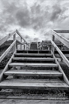 Photograph - Step On Up by Linda Lees