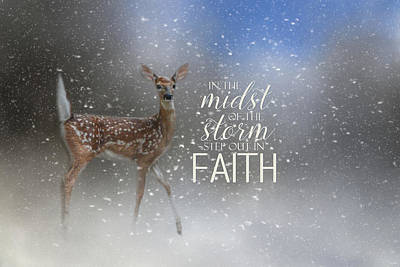 Photograph - Step Out In Faith - Deer Art by Jai Johnson