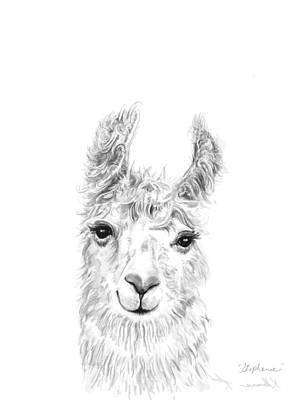 Mammals Royalty-Free and Rights-Managed Images - Stephanie by K Llamas