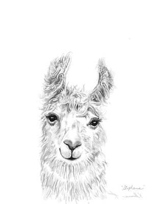 Animals Drawings - Stephanie by K Llamas