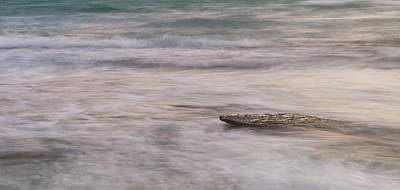 Photograph - Stepping Stone by Alex Lapidus