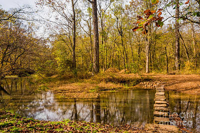 Stepping Stones At Rock Spring - Natchez Trace Art Print by Debra Martz
