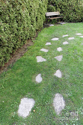 Photograph - Stepping Stones In A Garden by John  Mitchell