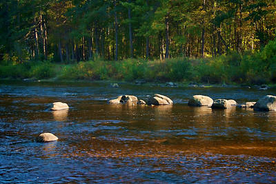 Photograph - Stepping Stones by Mike Smale