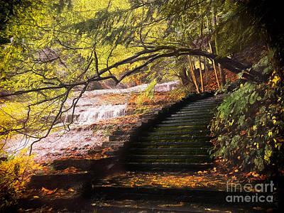 Steps At Buttermilk Falls Art Print
