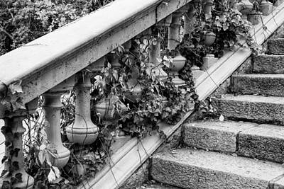 Photograph - Steps by Gary Lengyel