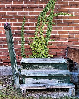 Photograph - Steps To Loading Dock by Janice Drew