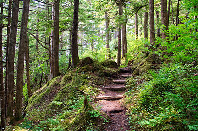 Photograph - Steps To Point Caroline - Juneau Alaska by Cathy Mahnke