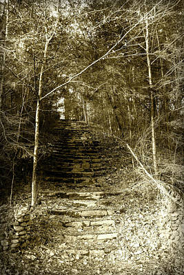 Photograph - Steps To Wonderland by Sharon Popek