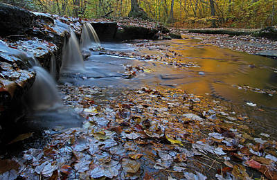 Photograph - Stepstone Falls In Rhode Island by Juergen Roth