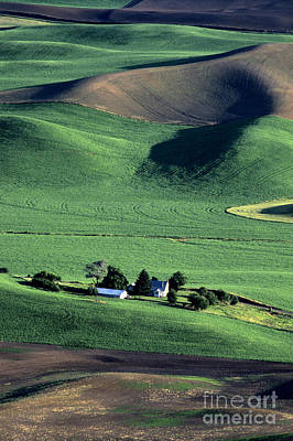 Photograph - Steptoe Butte Farm by Jim Corwin