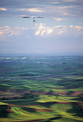 Photograph - Steptoe Butte Handglider by Doug Davidson