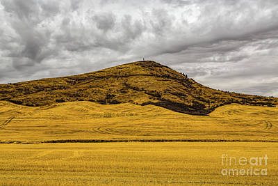 Photograph - Steptoe Butte by Jon Burch Photography
