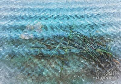 Digital Art - Sticks And Jellyfish by Georgianne Giese