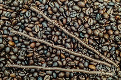 Photograph - Sticks 'n Beans by Werner Padarin