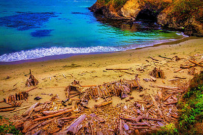 Mendocino California Coast Photograph - Sticky Cove Beach Mendocino by Garry Gay