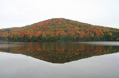 Photograph - Stiles Pond Vermont Autumn Reflection by Dan Sproul