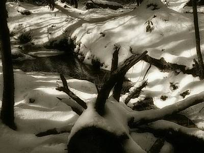 Winterscape Black And White Photograph - Still Beauty In A Winter Forest by Shelley Smith