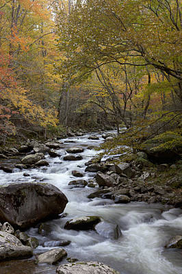 Mountain Stream Photograph - Still Comes by Jon Glaser