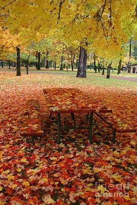 Photograph - Still Fall by Marie Neder