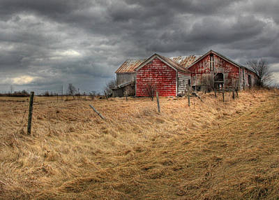 Red Barns Photograph - Still For Sale by Lori Deiter