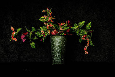 Photograph - Still Life # 3 by Tom and Pat Cory