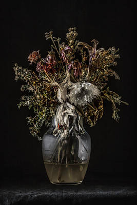 Photograph - Still Life #1 by Andrew Giovinazzo