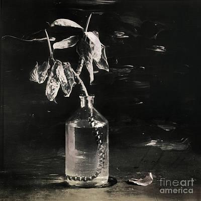 Still Life #141456 Art Print