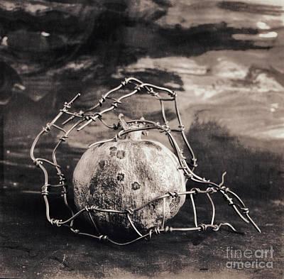 Photograph - Still Life #1422 by Andrey Godyaykin