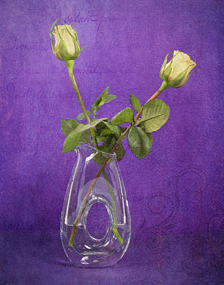 Photograph - Still Life - Elegant Yellow Rosebuds On Purple by Betty Denise
