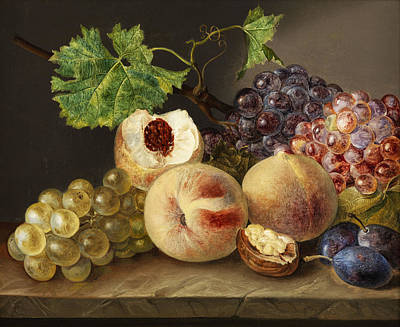 Kiwi Painting - Still Life by Franz Xaver Pette