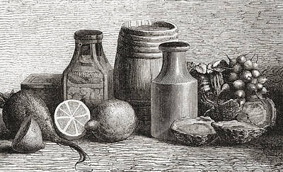 Lemon Drawing - Still Life. From A 19th Century Print by Vintage Design Pics