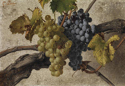 Vines Painting - Still Life by Giorgio Lucchesi