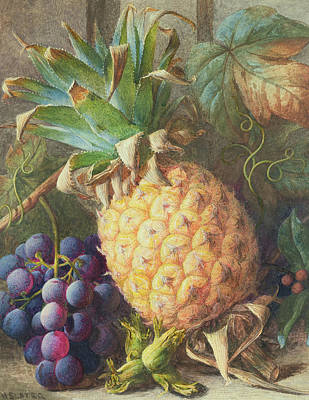 Still Life Of A Pineapple And Grapes  Art Print by Charles H Slater