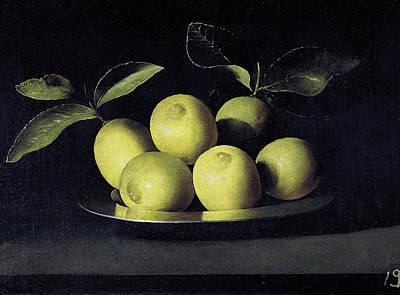Painting - Still Life Of Lemons by Juan de Zurbaran