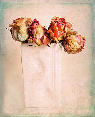 Photograph - Still Life Rose by Jessica Jenney