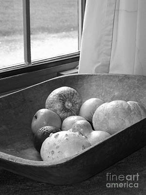 Photograph - Still Life by Sara Raber