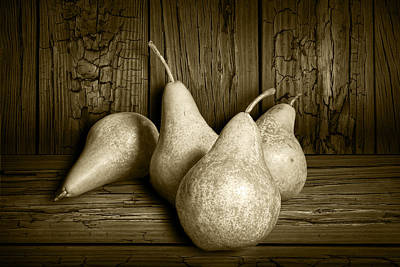 Photograph - Still Life Sepia Of Four Bartlett Pears by Randall Nyhof
