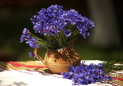 Photograph - Still Life With Blue Flowers by AmaS Art