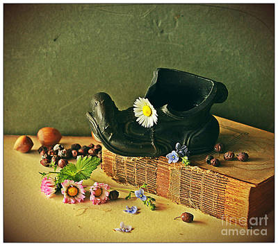 Photograph - Still Life With Daises by Binka Kirova