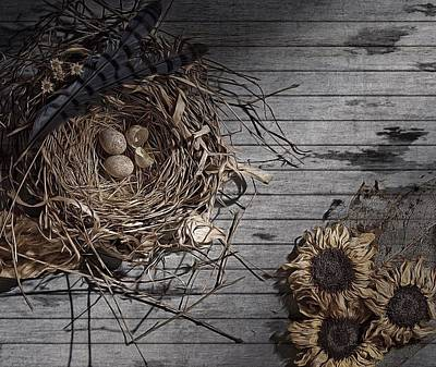 Photograph - Still Life With Flowers, Eggs, And Nest by Mark Fuller