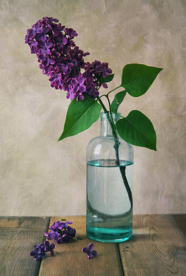 Photograph - Still Life With Fresh Lilac by Jaroslaw Blaminsky